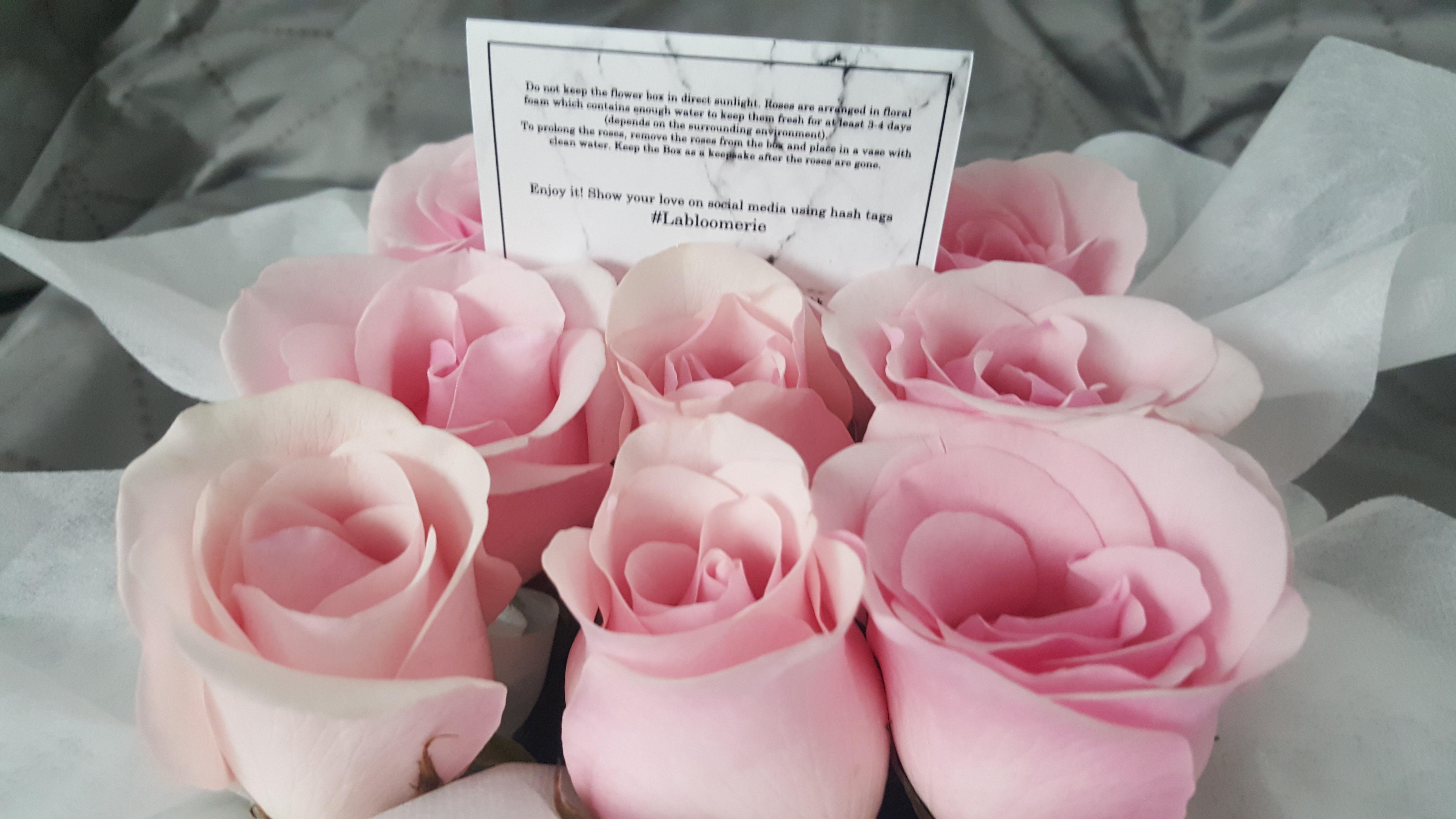 9 Petite Pink