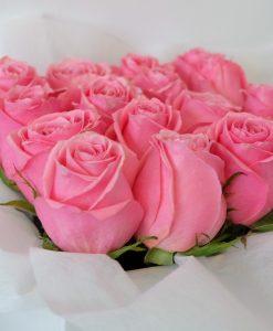 romance-pink-1